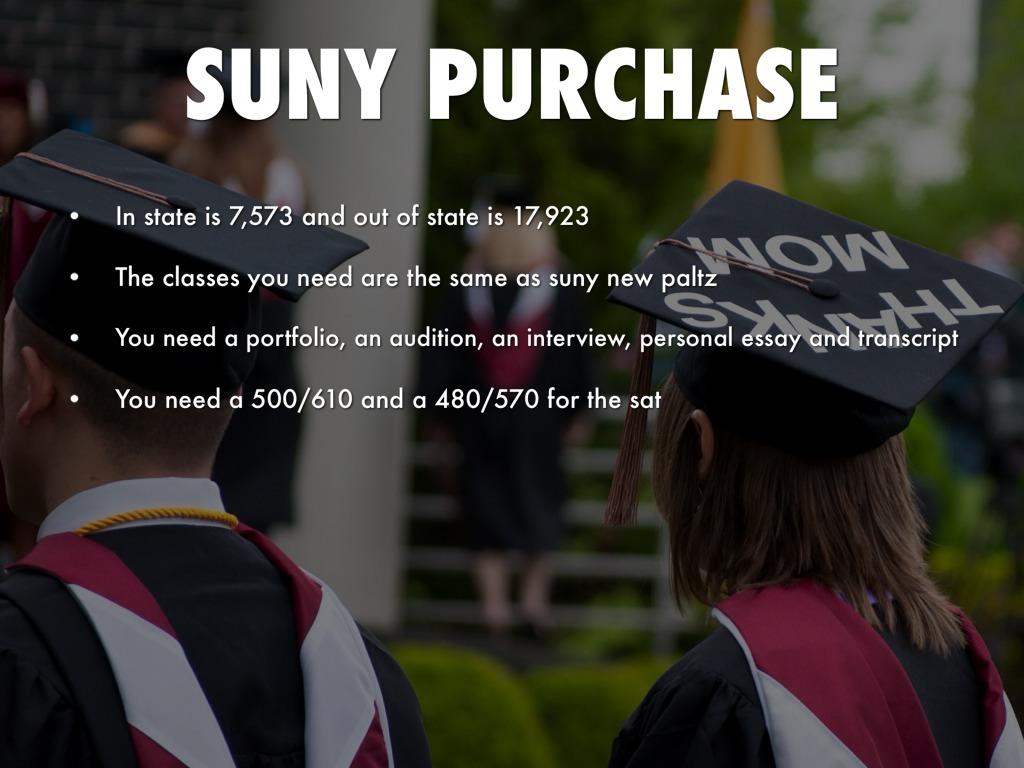 Suny purchase sat essay