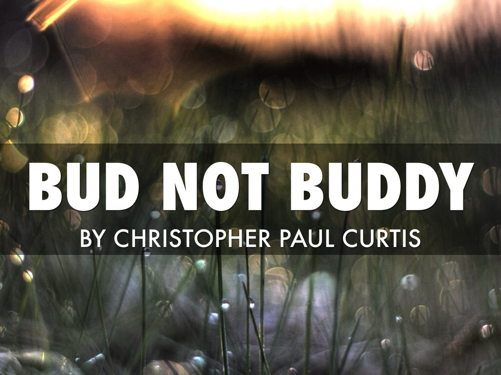 bud not buddy by haley evans