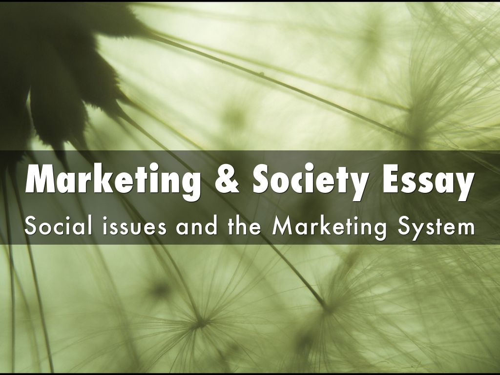markets and society essay This essay presents three kinds of market failure information asymmetries, positive and negative externalities, and public.