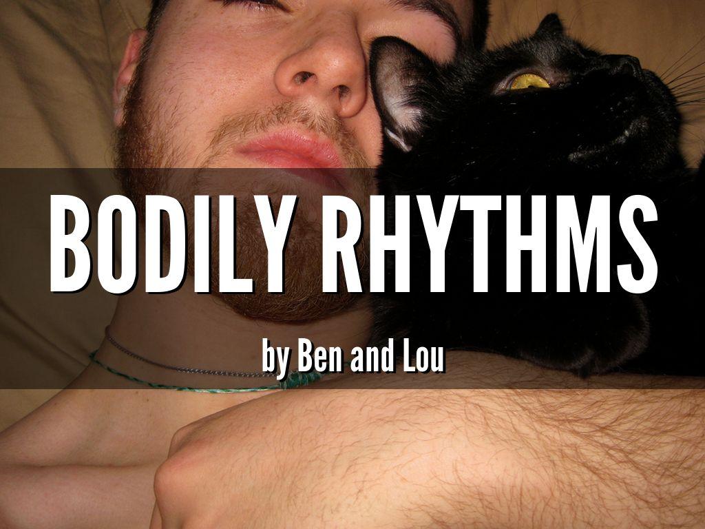 Bodily Rhythms
