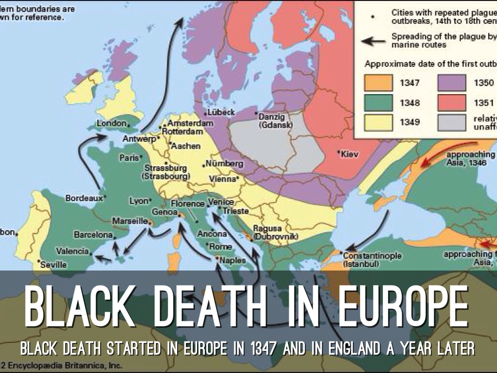 black death in europe essay This free history essay on essay: benefits to a catastrophe: the black death is perfect for history as the black death swept over europe it eradicated a third.