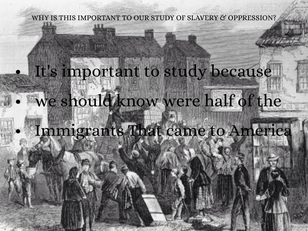 the white indentured servants