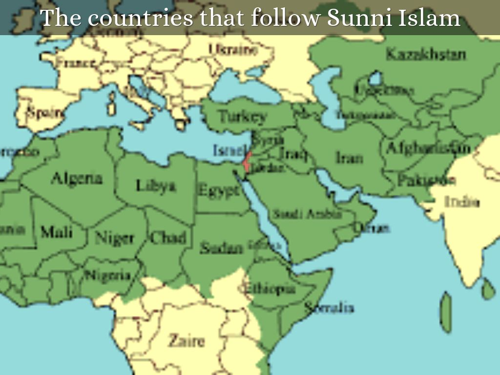 sunni shia 1: the muslims of the branch of islam that adheres to the orthodox tradition and acknowledges the first four caliphs as rightful successors of muhammad — compare shia.
