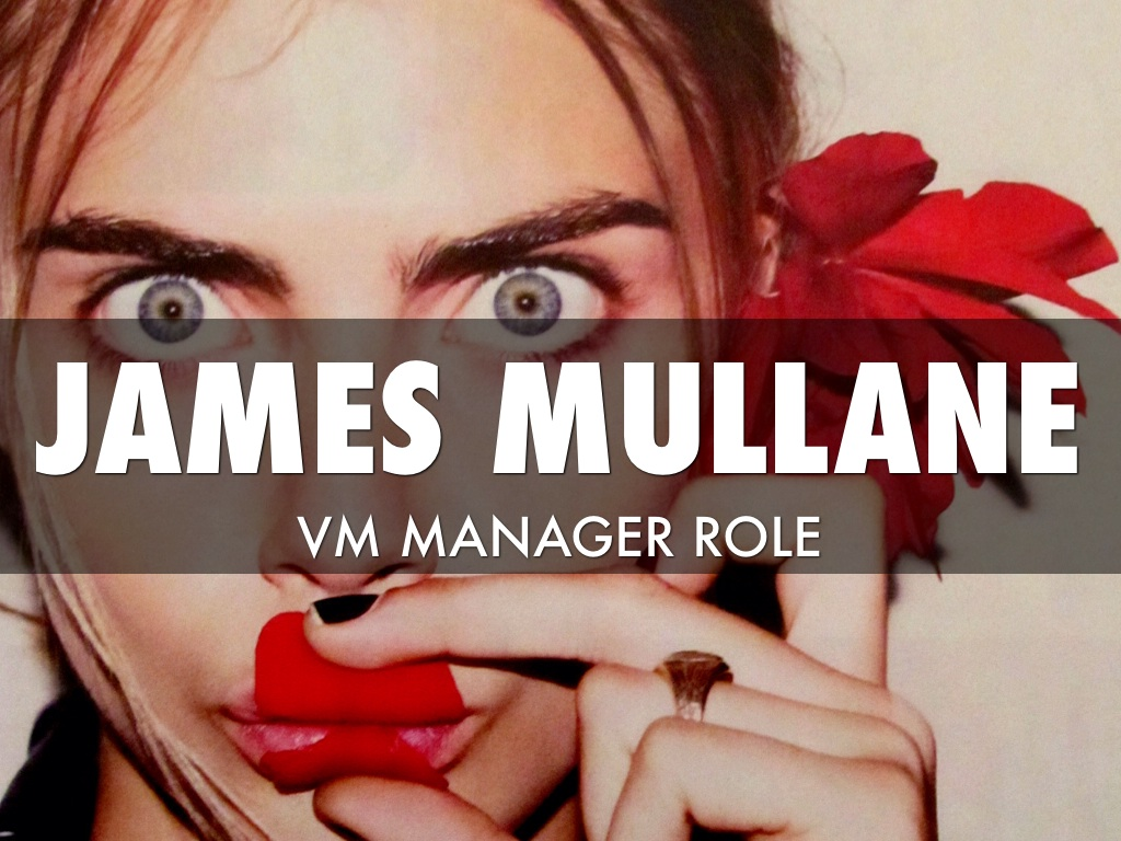 vm manager role