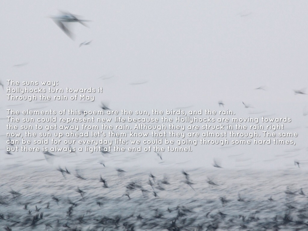haiku poems about rain - photo #29