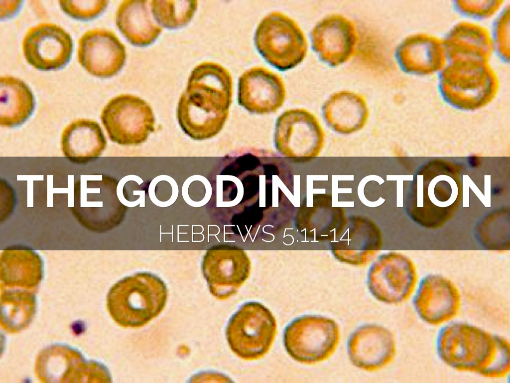 The Good Infection