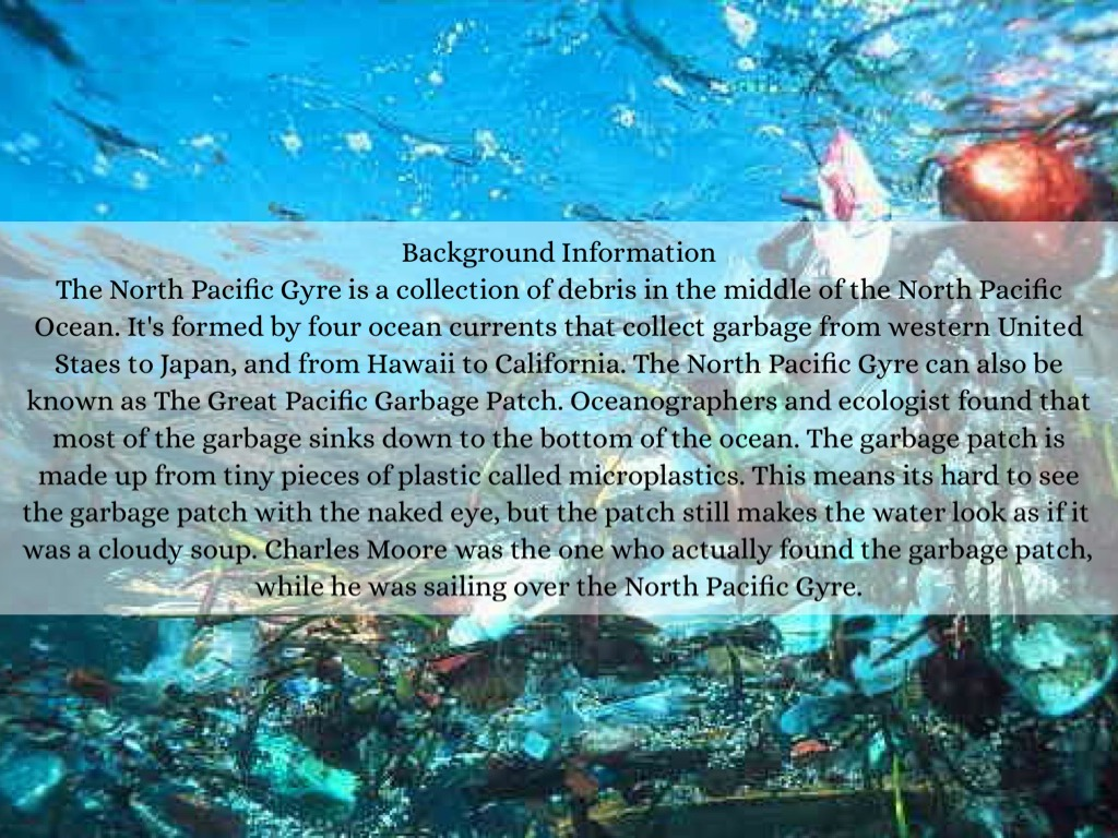 40 Interesting Great Pacific Garbage Patch Facts
