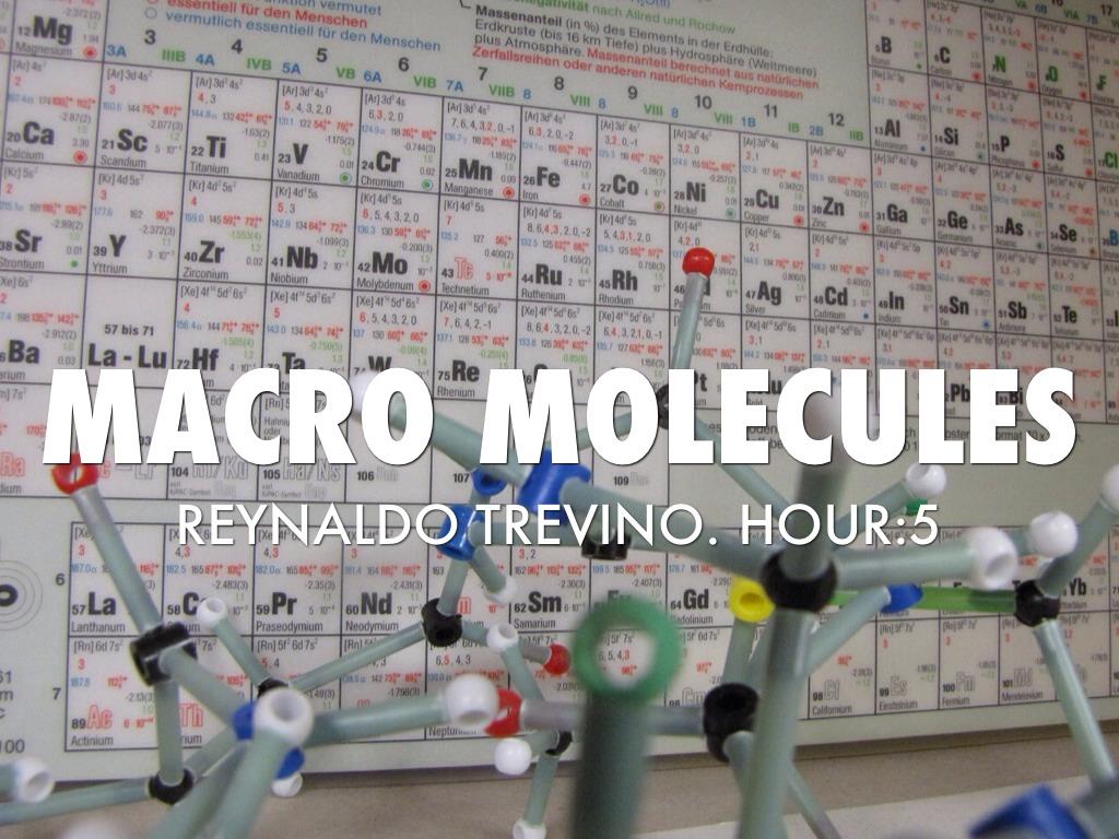 Macro Molecule-Trevino