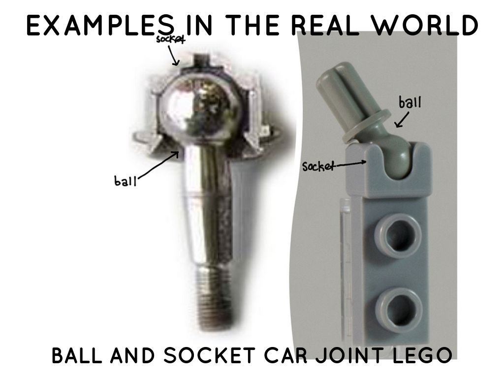 Ball And Socket Joint By Eliza Heath