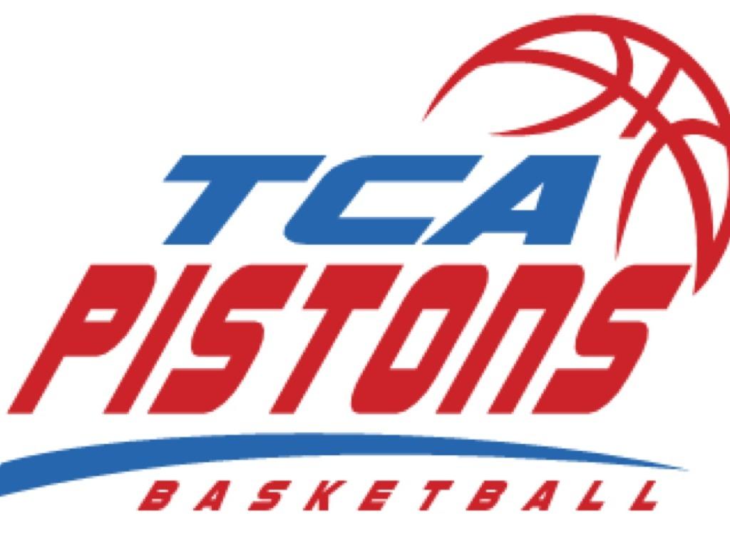TCA Pistons 2014 Training Seminar