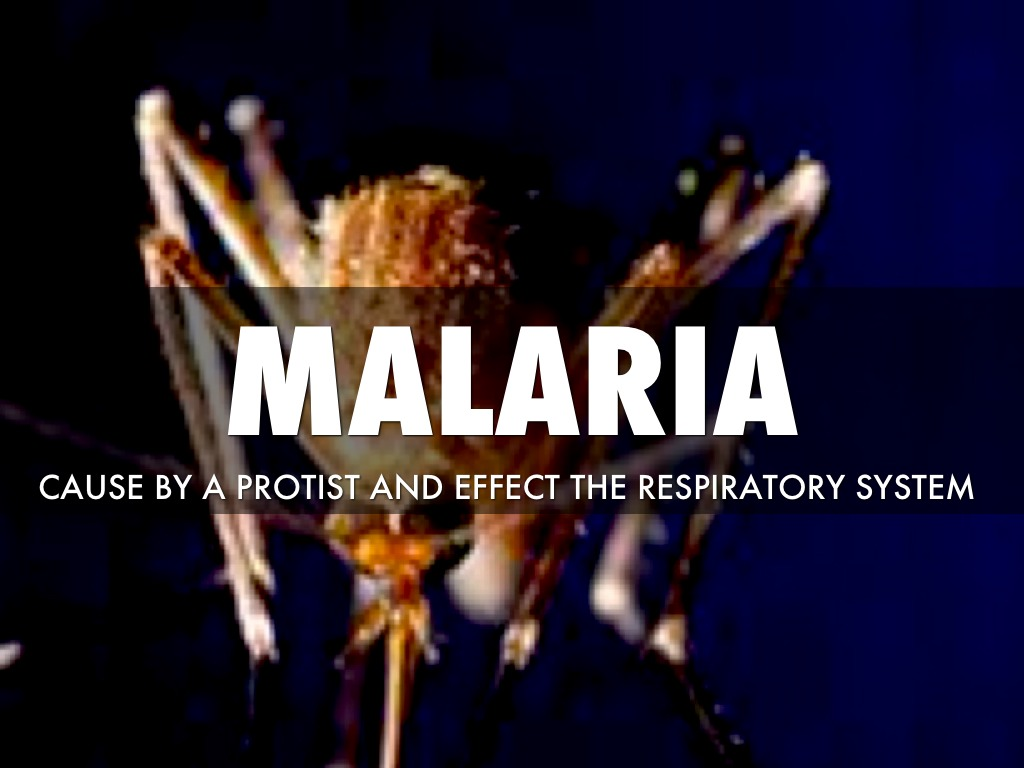 malaria causes effects and cures Malaria information including symptoms, diagnosis, misdiagnosis, treatment, causes, patient stories, videos, forums, prevention, and prognosis.
