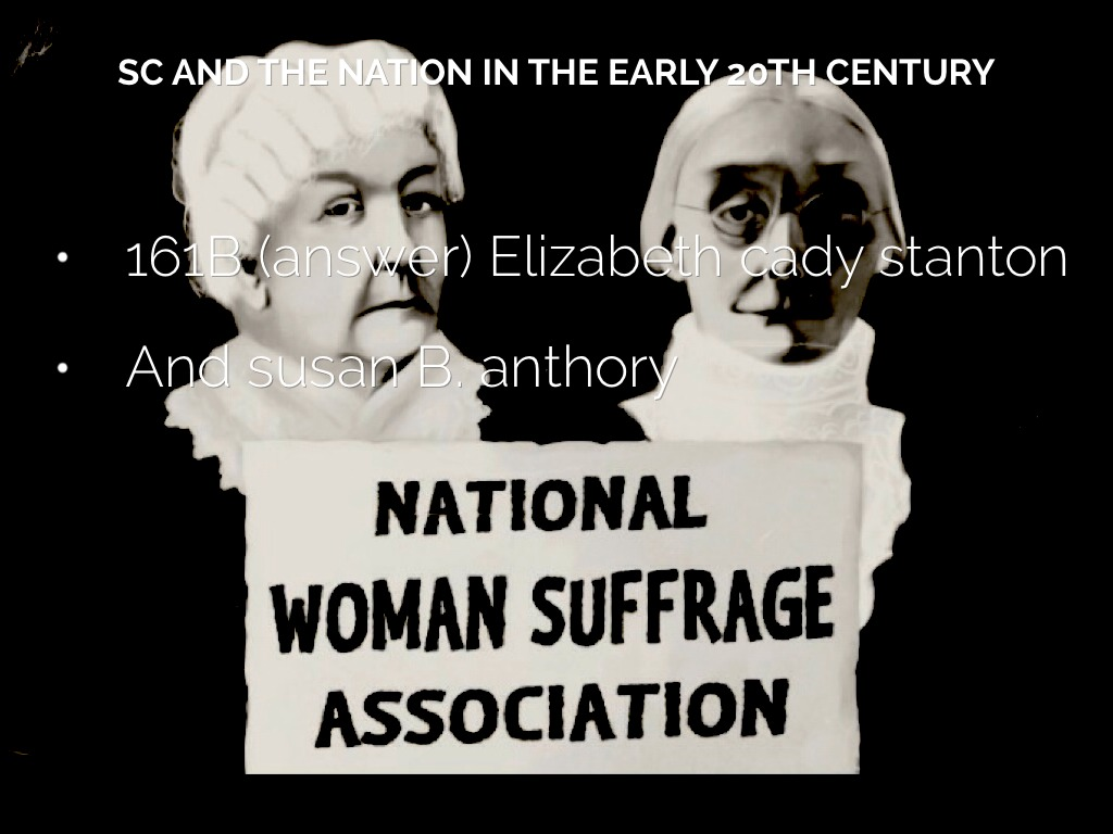 the national woman suffrage association The national american woman suffrage association (nawsa) was an american women's rights organization it was formed in may 1890 as a unification of the national woman suffrage association (nwsa) and the american woman suffrage association (awsa.