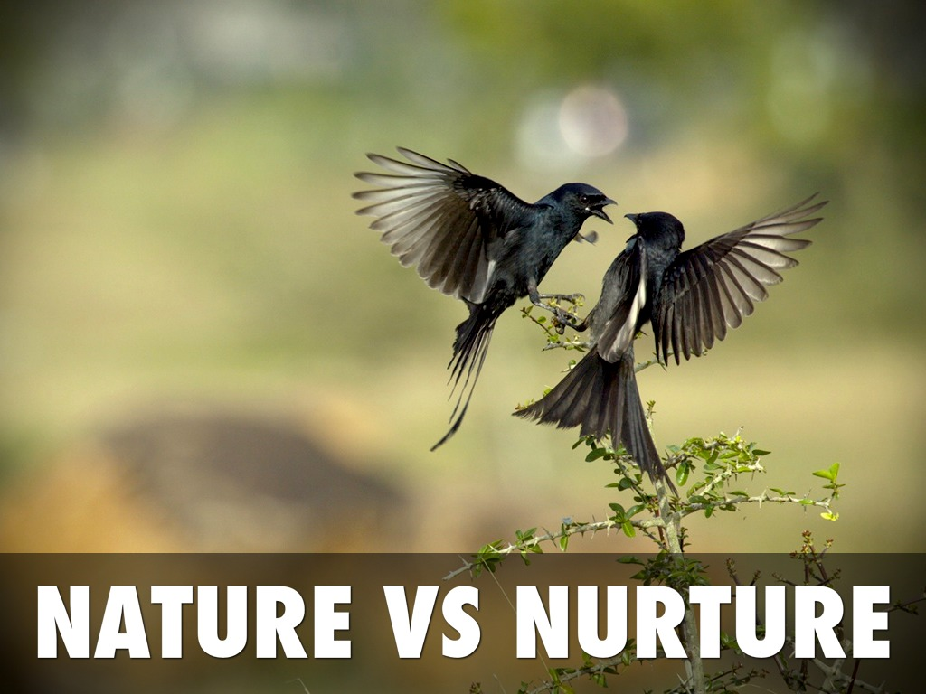 nature or nurture The nature vs nurture debate being yourself, being who you are when you hear those two lines you may think they mean the same thing but do they.