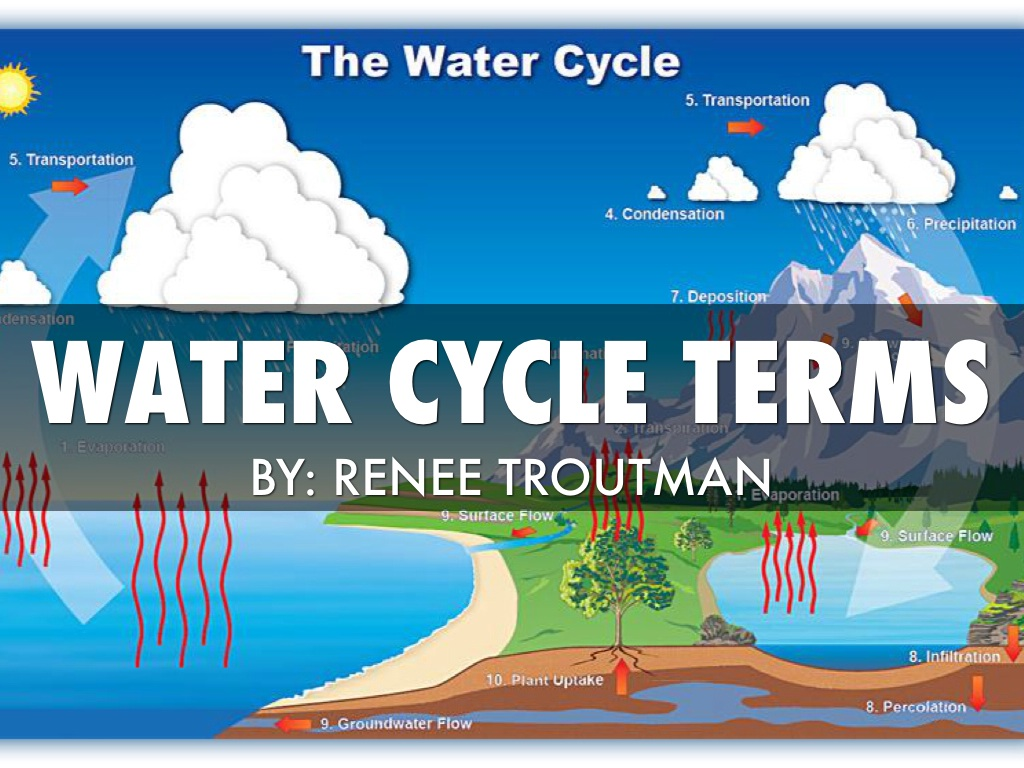 Water cycle terms by renee troutman slide notes ccuart Image collections