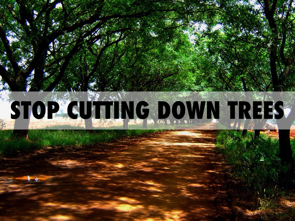 stop cutting trees But for the people who actually own those trees, cutting them down, selling them for timber, and using their land for agriculture is a great way of making are unrelated to my professional conduct or the operations of the office, they will effectively prevent me from leading the office's work at this critical time.