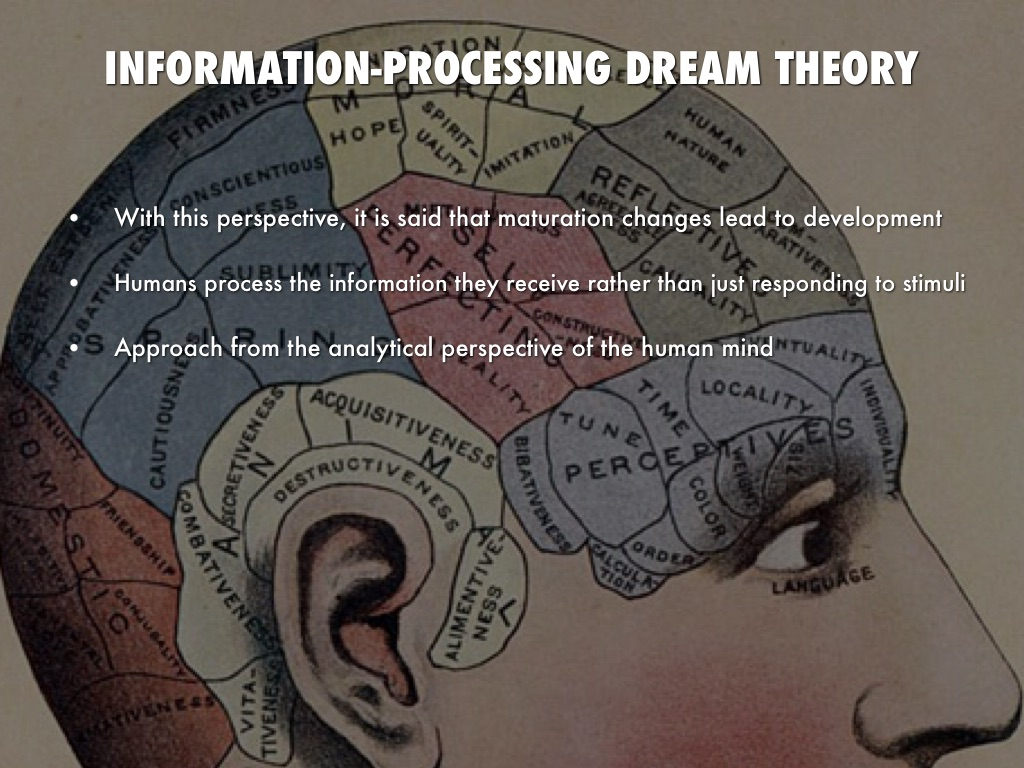 information processing theory of dreams Theories on dreams another theory states dreams are merely what take place when our brains take in the things that are happening around us while we sleep.