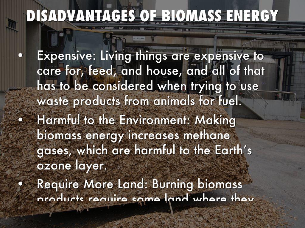 Biomass Energy by Seini Hau