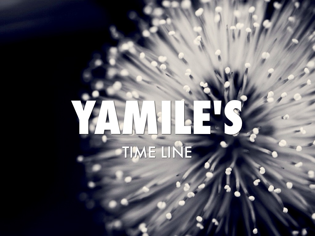 Time Line Yamile