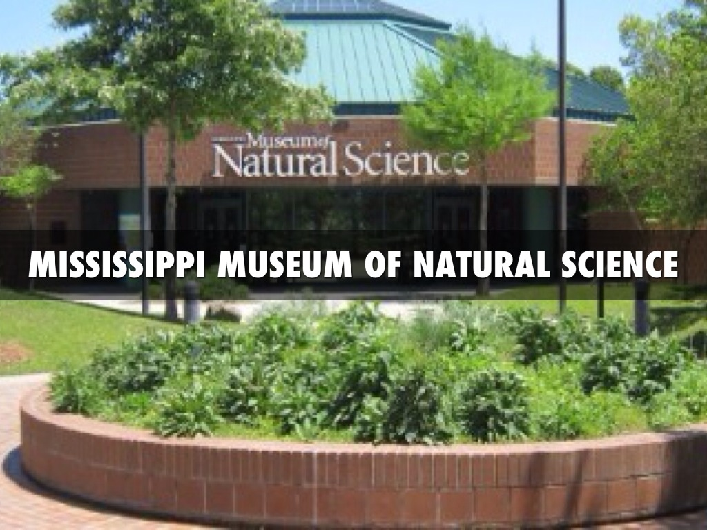 Museum Natural Science Jackson Ms