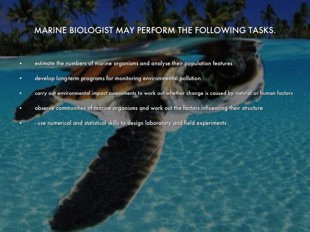 Marine Biology. by Katie Armstrong