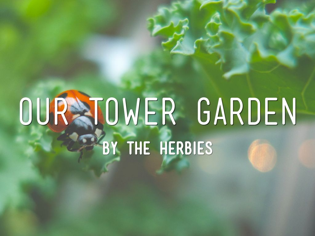 The Tower Garden