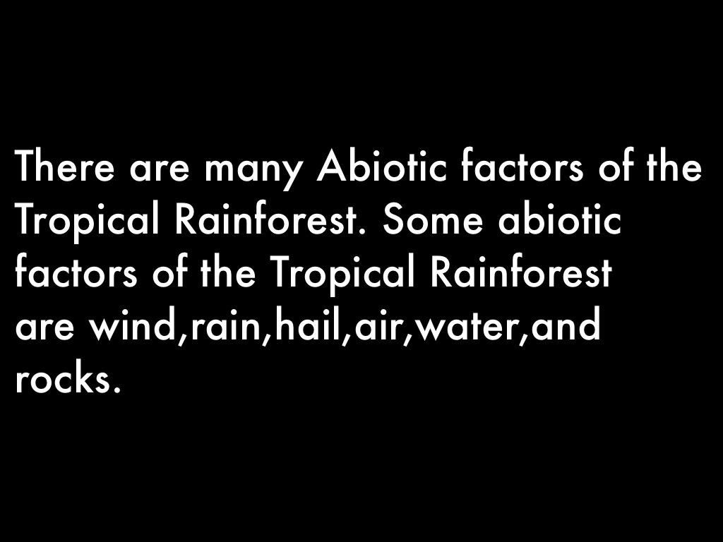 Tropical Rainforest by yyvjvyjjvgvjgvjgvj