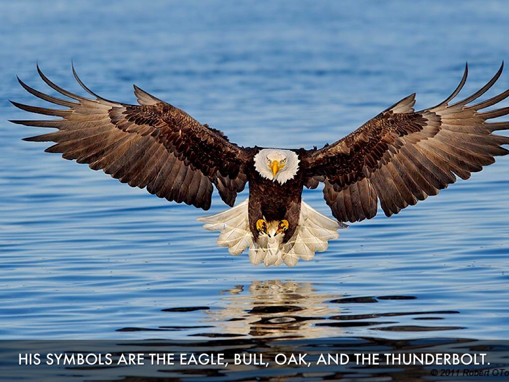 zeus symbol eagle - photo #10