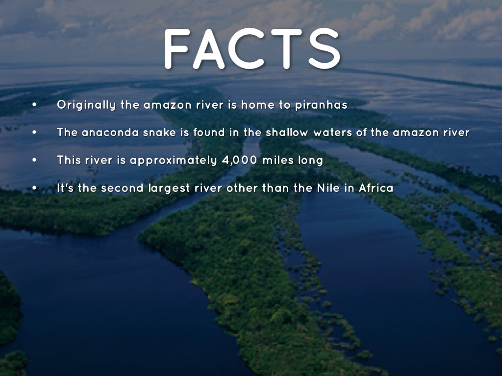 facts about the nile river The nile river is the longest river in the entire world the term nile has been derived from the greek word neilos that means a river valley.