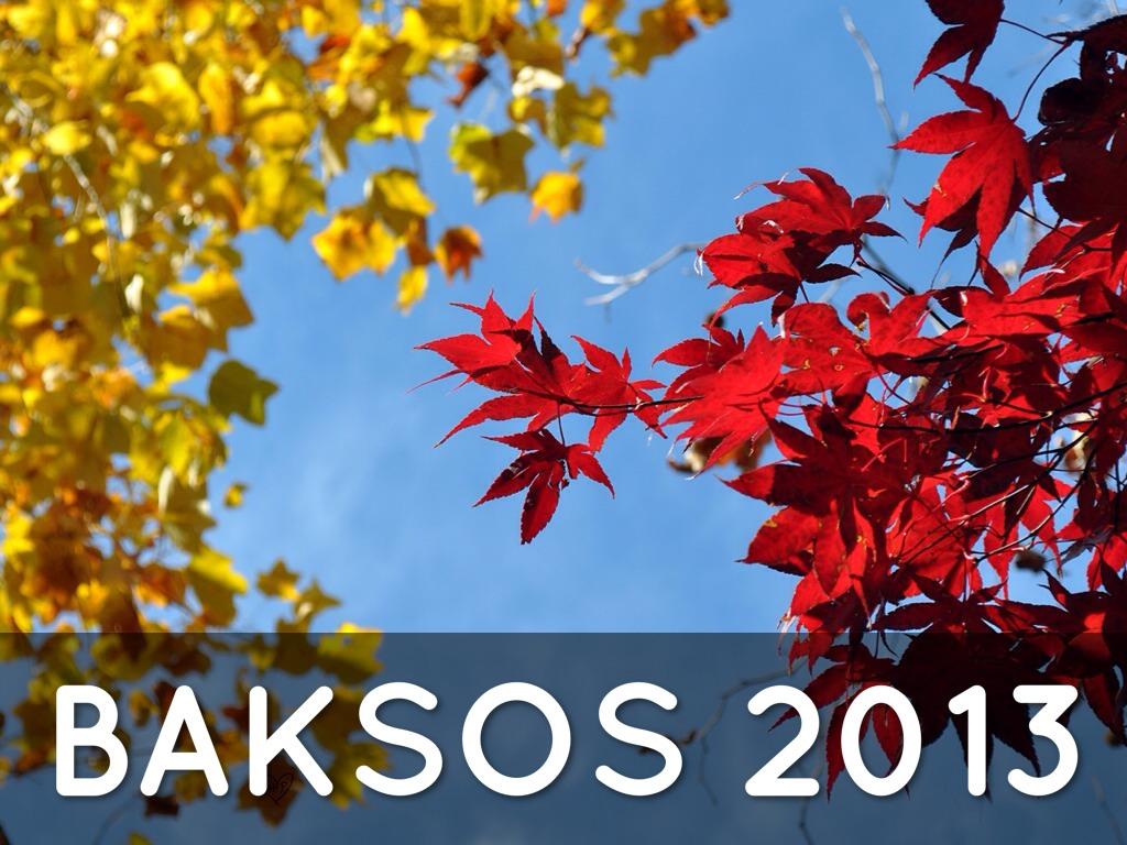 baksos 2013