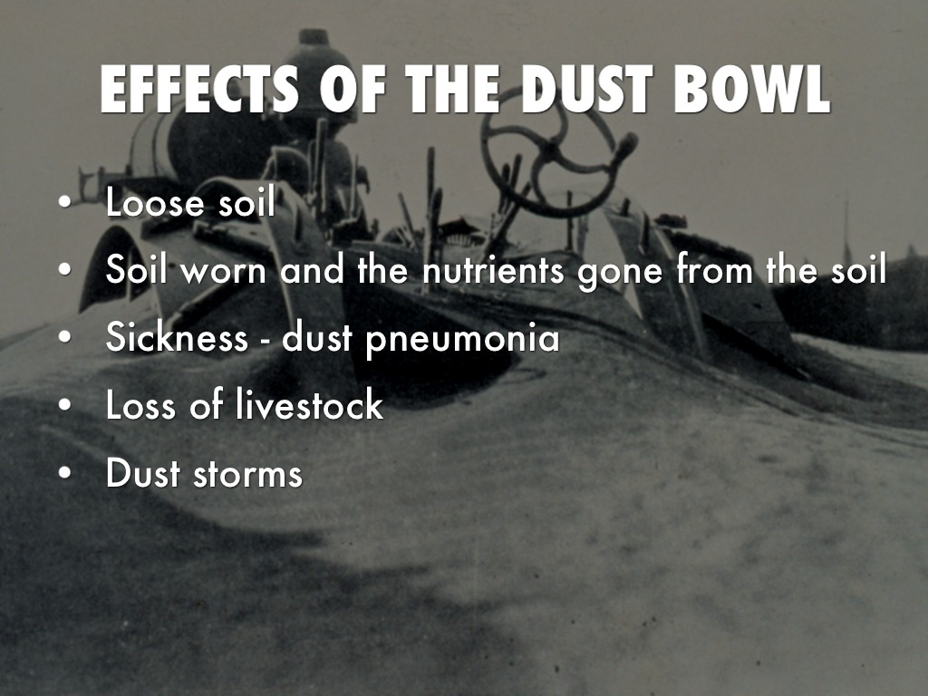 causes of the dust bowl essays What caused the dust bowl during the 1930's, giant sand and dust storms hit the western horizon many families across the nation were struck with the depression, however, families living.