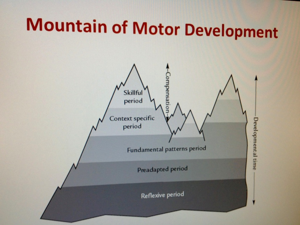 Motor Development Chapter One By Kristen Mullady