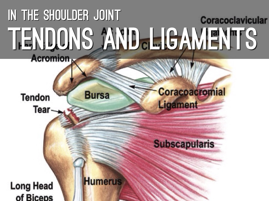 foto So You Need Joint Replacement Surgery