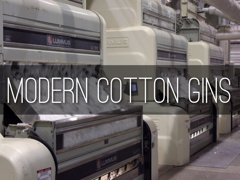 The Cotton Gin By Rebecca Dose
