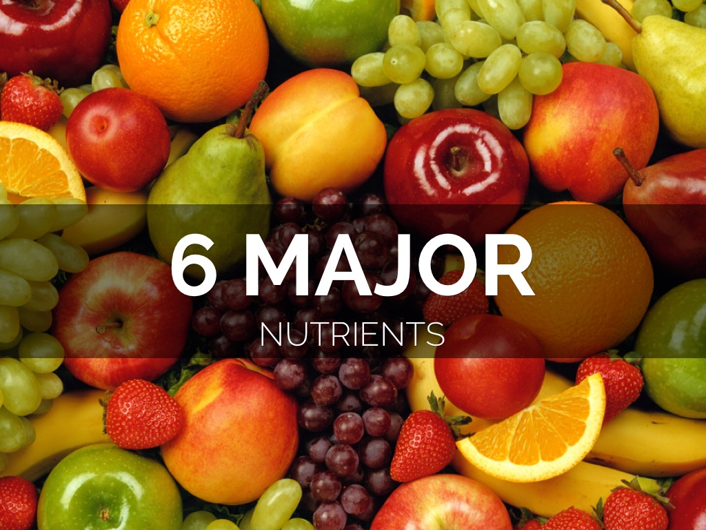 6 Major Nutrients by Moselle Punni