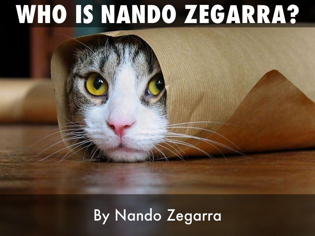 Who is nando zegarra?