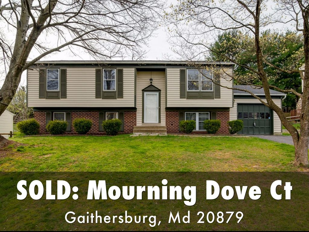 8824 Mourning Dove Ct