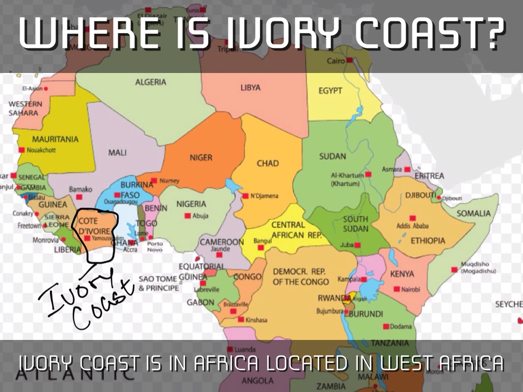 the ivory coast The richness of ivory coast is found in its paradoxes in this geography of  exceptional diversity, embodied to perfection by extraordinary fauna and flora  just like.