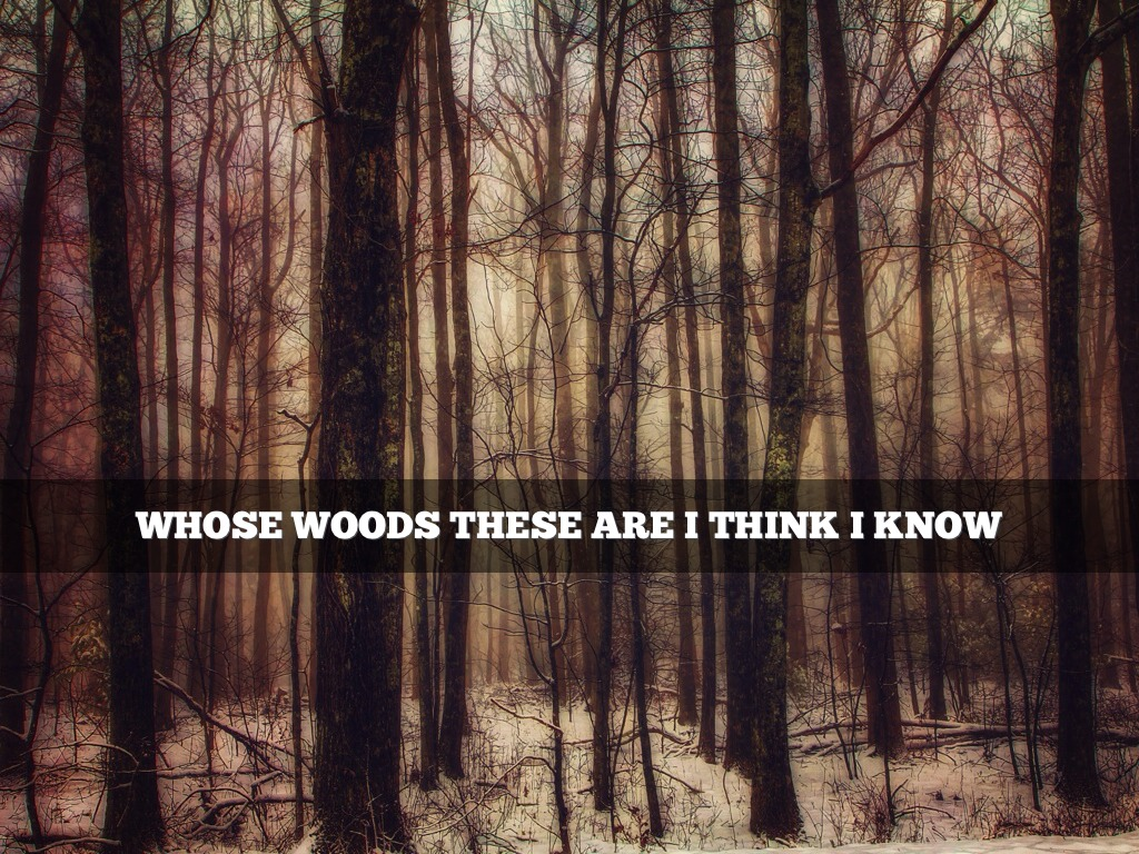 stopping by woods on a snowy evening by mark traphagen whose woods these are i think i know photo by dbnunley