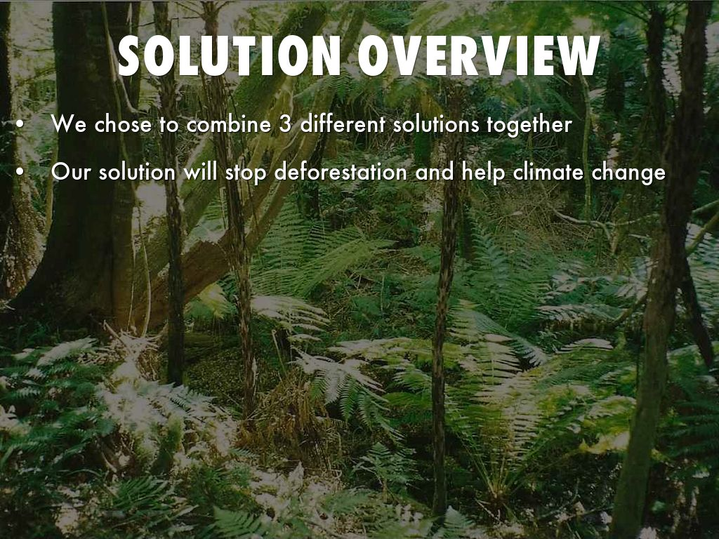 deforestation solutions Deforestation is a serious threat to our world despite it taking the backseat to more talked about issues take a closer look at deforestation here.