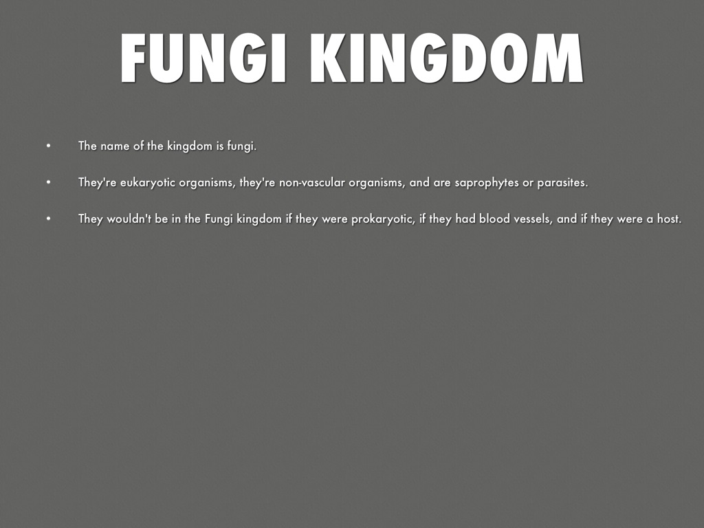 Protista Kingdom And Fungi Kingdom by brettd_russell