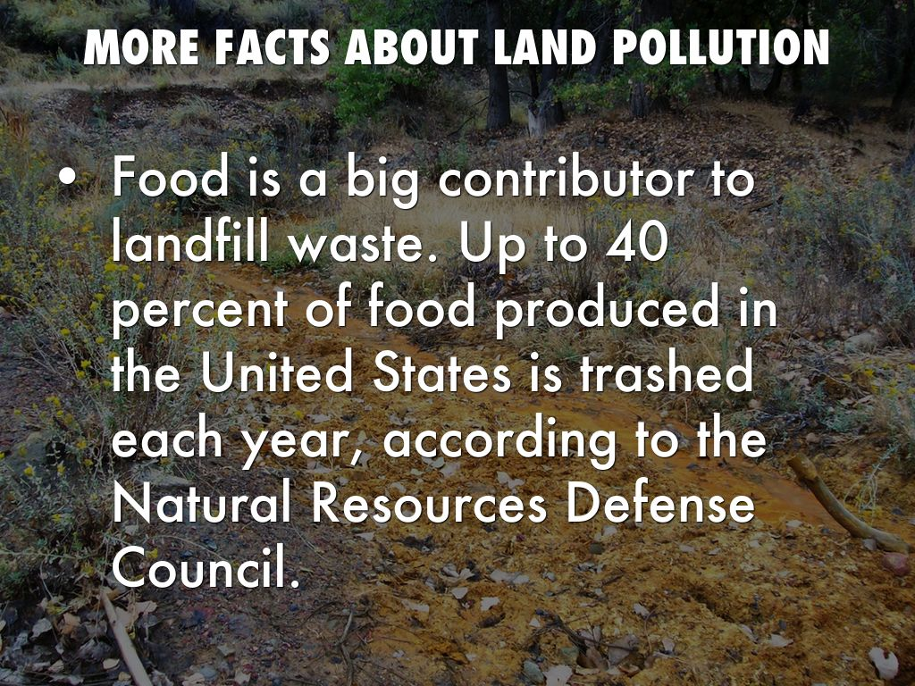 Land Facts
