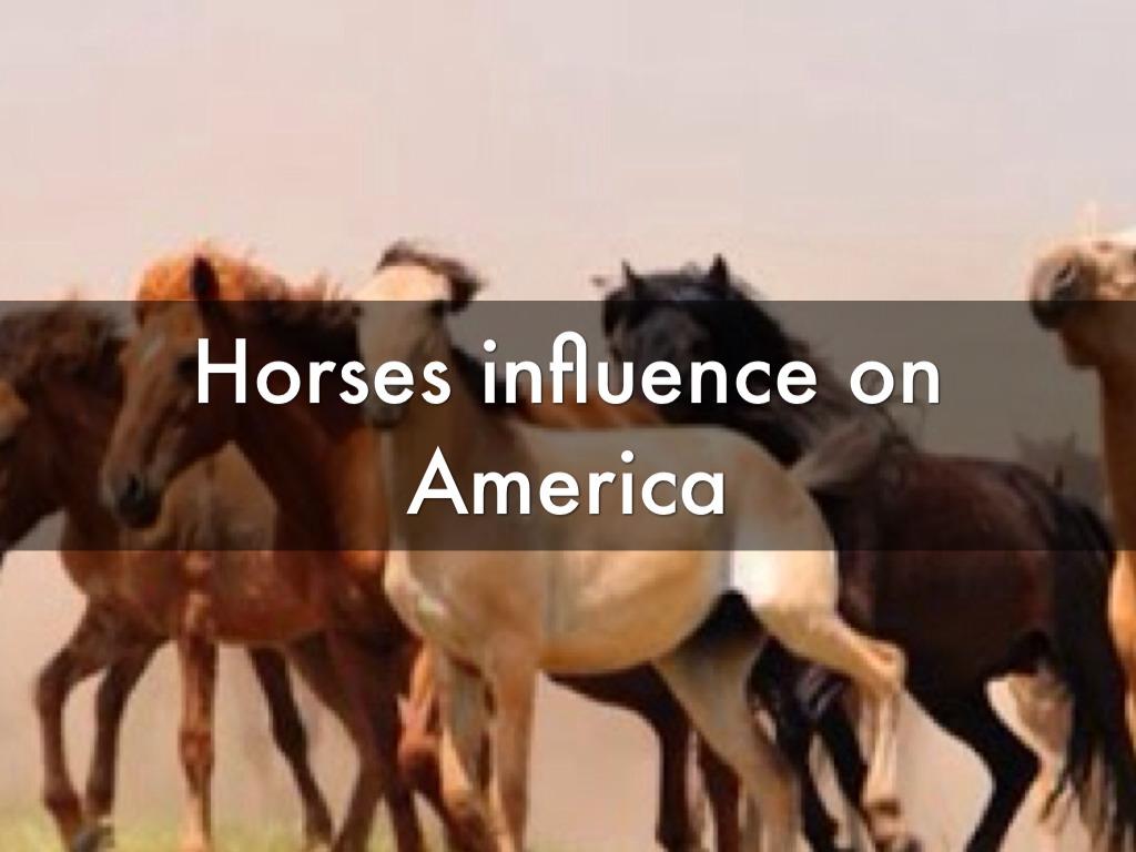 Horses In America