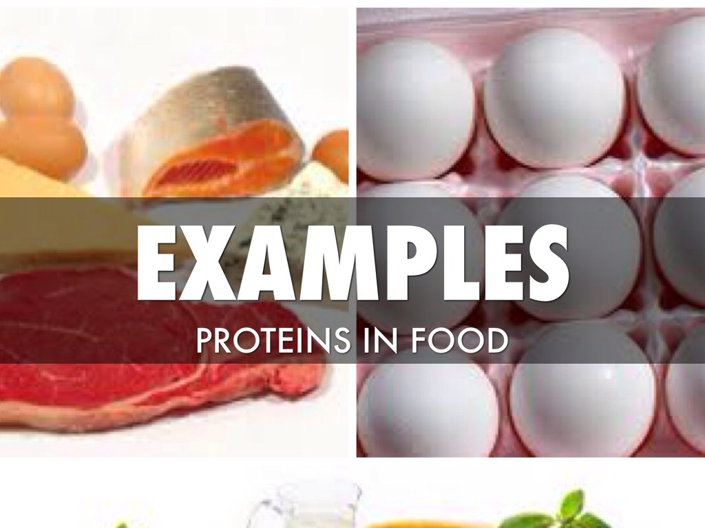 food macromolecules This approach can be used either as a lecture for the general public or as a series the texture of foods (3) food consists of macromolecules that are.