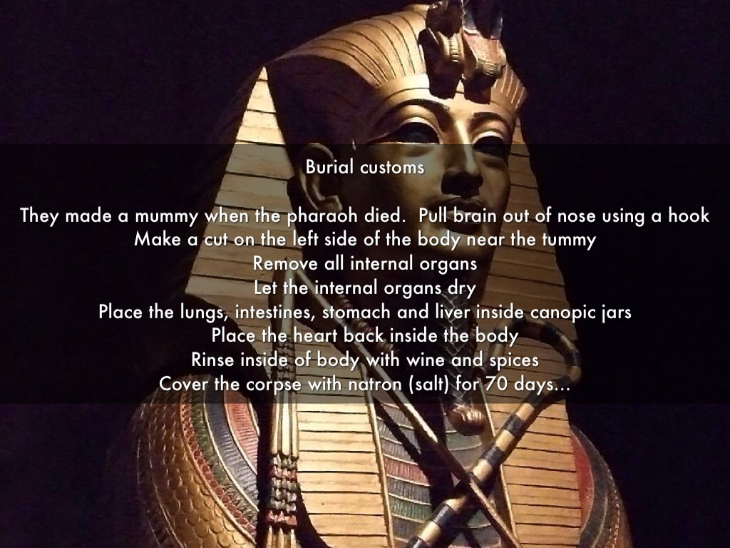 egyptian hook up nose