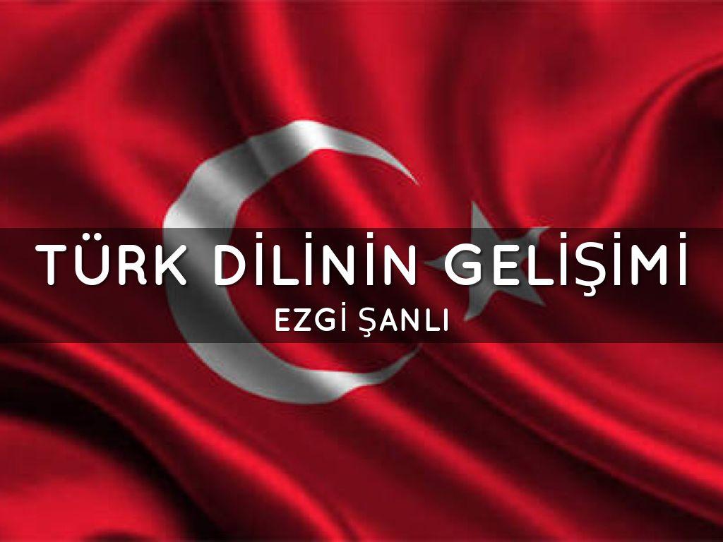Türk Dilinin Gelişimi