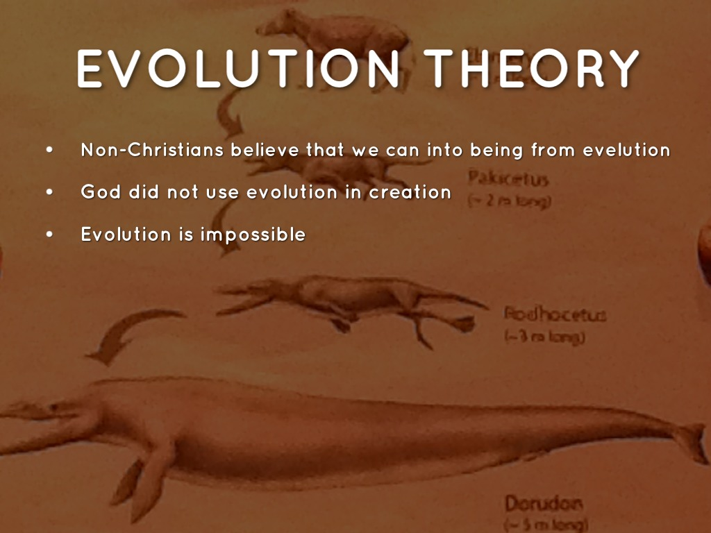 comparison theory of evolution vs creationism theory Creation vs evolution - the definitions the theory of evolution wouldn't be called a theory what is creationism creationism vs darwinism.