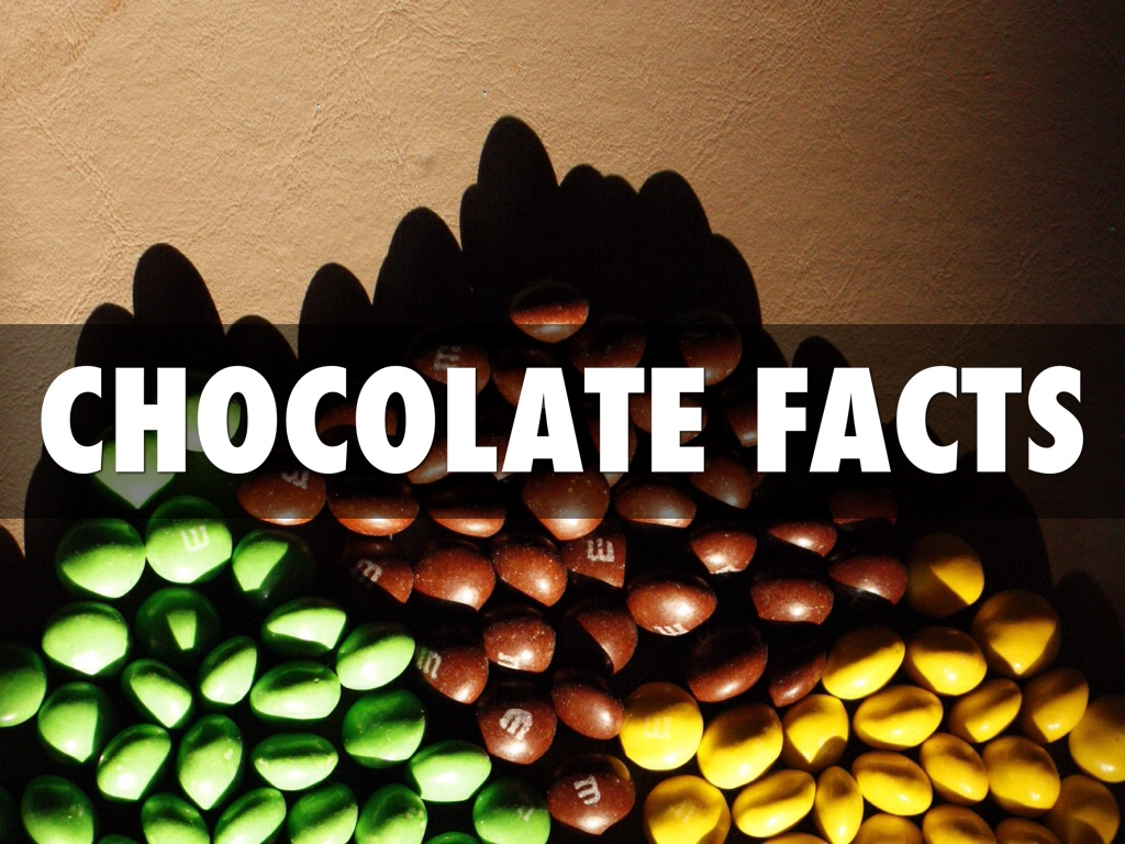 Chocolate Facts by Begum Ayirga