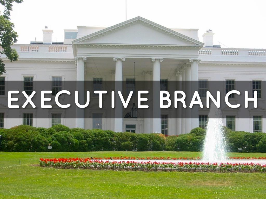 Executive (government)