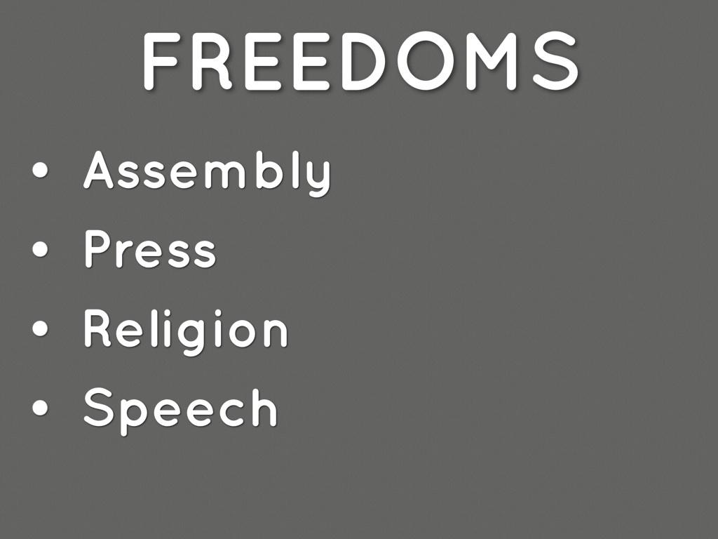 amendment 1 by allie armes