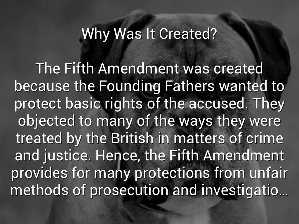 the 5th amendment by amrit cheema